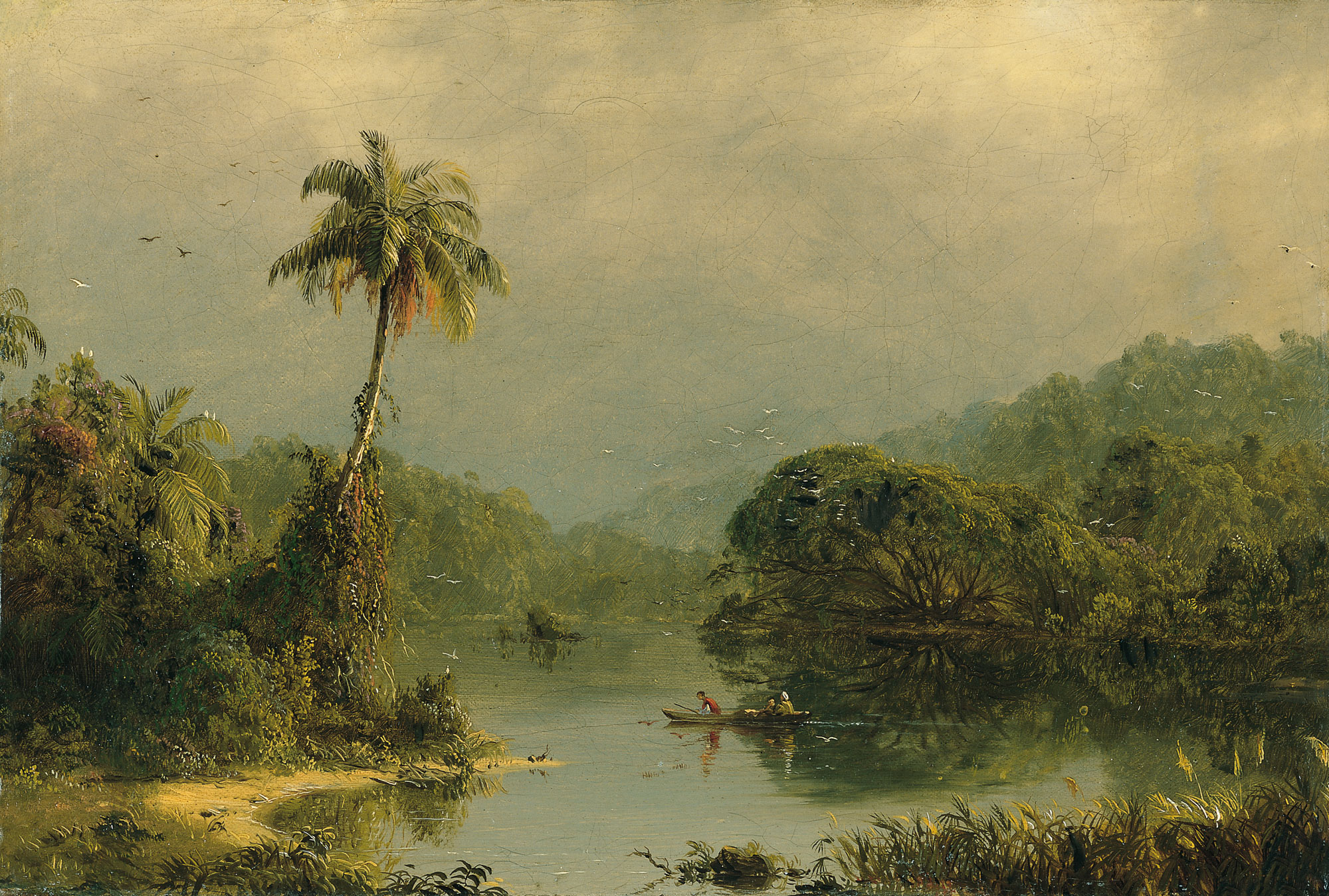 Paisaje tropical